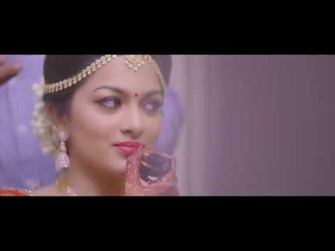 Sheetal & Harsha Wedding Highlights ( South Indian Tamil Wedding)